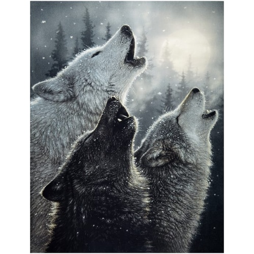 Wild and Playful Howling Wolves Wolf Panel