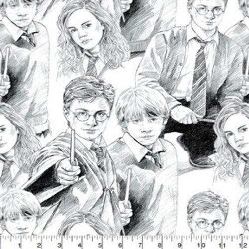 Harry Potter Sketch Fabric
