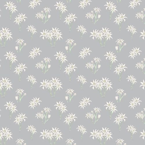 Sweet Bilby Flowers Grey