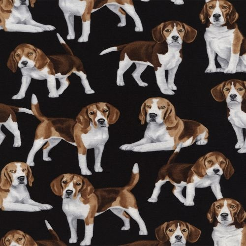 Beagles Black